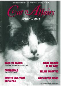 2002 Spring